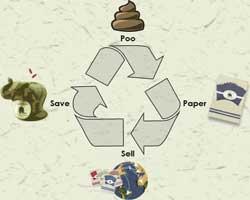 elefant_dung_paper